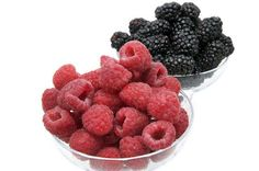 receitas fernandes: curiocidades entre a fruta amora e a frambroeza