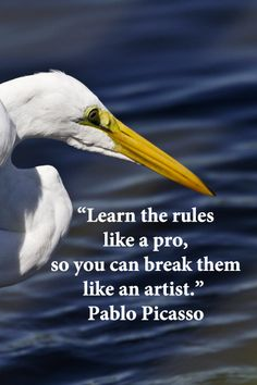 """""""Learn the rules like a pro, so you can break them like an artist."""" Pablo Picasso – On image by F. McGinn, taken in South Carolina. I learned this philosophy a long time ago. Words Quotes, Wise Words, Me Quotes, Sayings, Great Quotes, Quotes To Live By, Inspirational Quotes, Amazing Quotes, Interior Design Quotes"""