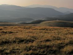 Góry Parang Paintings, Mountains, Nature, Travel, Geography, Naturaleza, Viajes, Paint, Painting Art