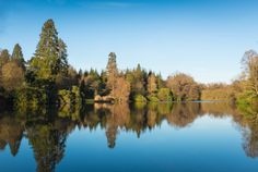 Sheffield Park and Gardens by Mike Griggs on 500px