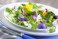What You Need to Know About Edible Flowers - GoodHousekeeping.com