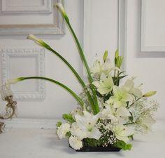 Lilies y Alcatraces