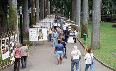 Feira Cultural da Fotografia & Imagem - Catete - Compras & Estilo - Time Out Rio de Janeiro
