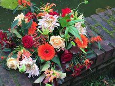 Floral Wreath, Bloom, Wreaths, Plants, Home Decor, Floral Crown, Decoration Home, Door Wreaths, Room Decor