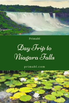 Exploring Ontario: Day trip to Niagara Falls | I had 1 day to spend in Niagara Falls and what a day it was! Check out how best to spend your limited time while at Niagara Falls! #NiagaraFalls #TravelBlog