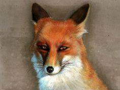 Red Fox ~ aritst Ariela Coco