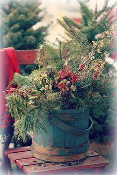winter in the garden | Flickr - Photo Sharing!