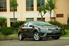 Proprietários dos modelos Toyota Corolla e Prius e Lexus CT200h estão sendo chamados para reparos.  Segundo a Toyota, foi constatado um defeito no canal de fluxo de gás de combustível, que pode apresentar trinca e vazamento, quando o estiver cheio.