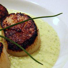 Seared Scallops with Spring Onion and Tarragon Cream