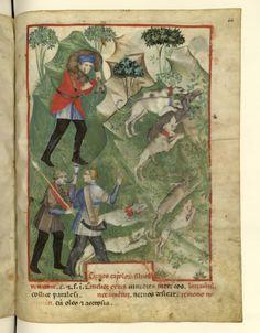 Nouvelle acquisition latine 1673, fol. 64, Chasse. Tacuinum sanitatis, Milano or Pavie (Italy), 1390-1400.