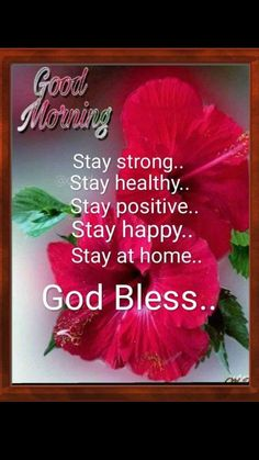 Blessed Morning Quotes, Good Morning Beautiful Images, Latest Good Morning Images, Good Morning Images Hd, Inspirational Quotes With Images, Morning Greetings Quotes, Morning Blessings, Good Morning Messages, Morning Prayers