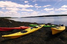 Maine sea Kayaking and Camping by travel4foodfun | Tripoto