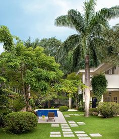 The pool is just one of the attractions of this garden, full of trees and pergola to relax. Backyard Pool Designs, Swimming Pool Designs, Patio Design, Garden Design, Tropical Landscaping, Tropical Garden, Backyard Landscaping, Lawn Grass Types, Village House Design