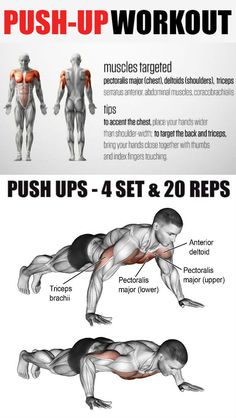 The pushup is an exercise that works almost every part of your body. You don't need any equipment or a gym membership. The pushup uses the body's weight working against gravity to strengthen muscles. A person who does push-ups can strengthen there chest, Gym Workout Chart, Push Up Workout, Gym Workout Tips, Fun Workouts, At Home Workouts, Workout Fitness, Chest Workout For Men, Chest Workouts, Video Sport