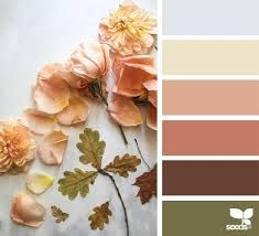 Image result for peach green dark brown color palette