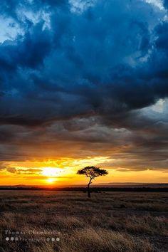 A stormy sunset on the Masai Mara in Kenya.