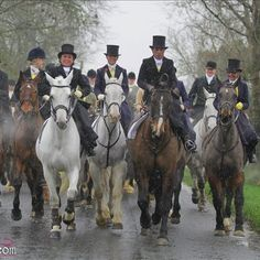 Side Saddle Ladies of the Meath Hunt - 52 Ladies aside. What an Amazing day! Photo by www.ironia-art.com