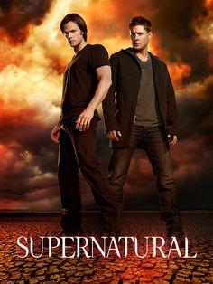 The Vampire Diaries TV Play HD Silk Poster 13x20 24x36 Paul Wesley Ian Joseph 10