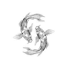 Natasha Creaton (@fillingblankspaces_) • Instagram photos and videos Sea Art, Photo And Video, Tattoos, Videos, Photos, Animals, Instagram, Tatuajes, Pictures