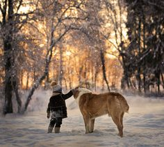 one more sunrise together.. by Elena Shumilova on 500px