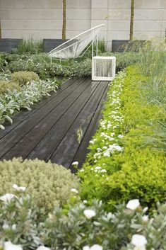 Garden Gallery - RHS Chelsea Flower Show 2012 - Rooftop Workplace of Tomorrow  / repinned on Toby Designs