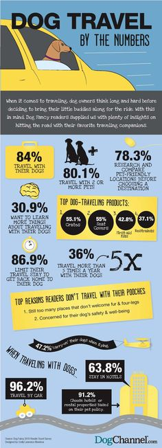See how many people travel with their dogs and get must have tips for dog vacations. Dog Facts & Tips for owners