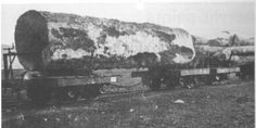 Narrow Gauge Forest Railroad in Knysna - South Western Railway Co Knysna, Cape Town, Old Photos, South Africa, Westerns, Past, History, Outdoor, Image