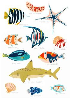 cardboard crafts for adults projects Fiji Sea Life Print Under the Sea Coral Reef Fish Print Meer Illustration, Botanical Illustration, Nature Illustration, Doodle Drawing, Drawing Sketches, Drawings, Animals Tattoo, Nautical Wall Art, Nautical Nursery
