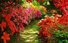 mooie combinatie van kleuren