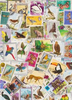 Idee om mijn oude postzegels te verwerken in een soort quilt achtige poster. Verwerken van licht naar donker, niet zo door elkaar. Bijv. een patroon volgen