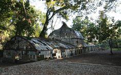 Antiguo invernadero de Hacienda Nadales.