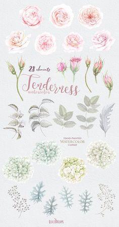 Elementos acuarela floral rosas hortensias flores de Boho