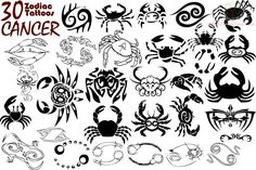 astrological tatoos | Cancer Exclusive Zodiac Tattoos Designs