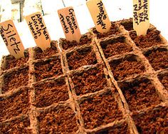 4 Seed Labeling Options, So You Don't Forget What You Planted