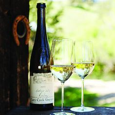 Riesling: crisp and aromatic white wine