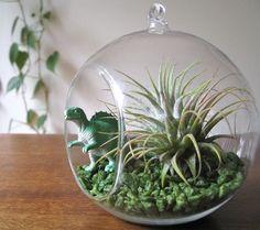 Love the Dino addition hehe Hanging glass dinosaur terrarium kit - ETSY $32.50