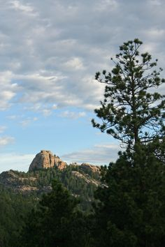 Shortly after sunrise, on Iron Mountain Road, Black Hills, SD.