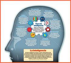 Los distintos tipos de inteligencia existentes perfectamente explicados en una infografía. ¿Cuál de estos tipos has desarrollado en tu caso?