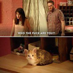 Fucking Cats- Broad City