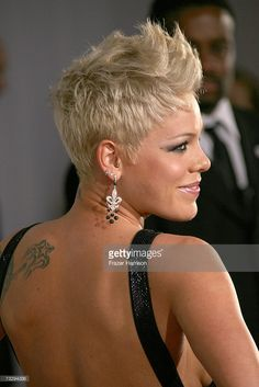 Singer Pink arrives at the 49th Annual Grammy Awards at the Staples Center on February 11, 2007 in Los Angeles, California.