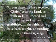 """""""As you therefore have received Christ Jesus the Lord, so walk in Him, rooted and built up in Him and established in the faith, as you have been taught, abounding in it with thanksgiving."""" – Colossians 2:6-7 #Christianity #bible #biblequotes #colossians #colossians2_6_7 #godsword"""