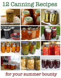 12 Canning Recipes for Summer's Bounty. It is a nice thought but who the heck has time.