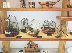 The Perfect Future :Score+Solder's handmade quartz terrariums on display