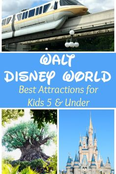 Taking young children to Disney World doesn't have to be a pain! Planning and preparation are key to having a great vacation. Read our best attractions for kids under 5.