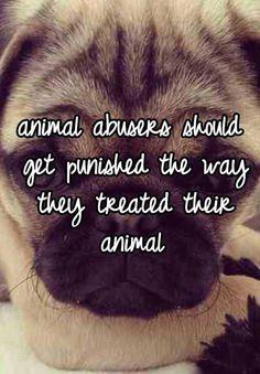 Animal abusers...