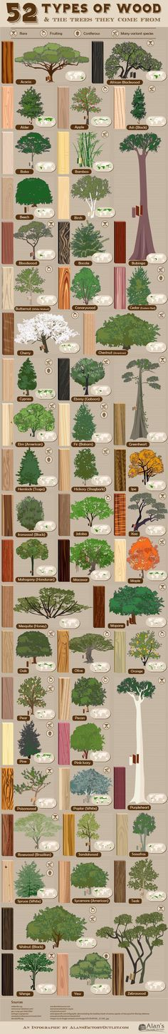 Familiarity with #tree types and #wood grain is one of the most important skills of #woodworking.: – Handbooking