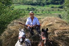 City People, Roman Empire, Bradley Mountain, Country Life, Romania, Just Go, Old Things, Horses, People