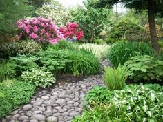 Stone path through perennials.