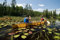 Boundary Waters Canoe Area Wilderness near Tofte, Minnesota Canoe Trip, Canoe And Kayak, Minnesota Tourism, Canoe Plans, Boundary Waters, Kayaking, Canoeing, Vacation Spots, The Great Outdoors