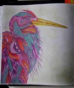 #adultcoloringbook #milliemarotta #tropicalwonderland #colormeditation